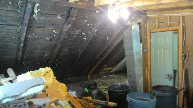 Original rafters and sheathing. The Leaning Tower of Chimney is just left of the door.