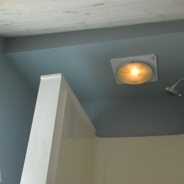 Shower fan and light.