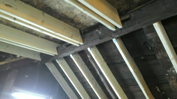 Bob's roof: old timbers, new sisters.