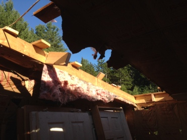 Experimental rafter removal.