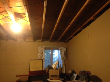Existing first floor joists.